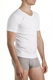 Bonds raglan v neck tee  m976