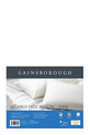 GAINSBOROUGH Allergy Free Pillow Firm