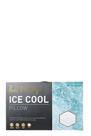BAS PHILLIPS Ice Cool Pillow