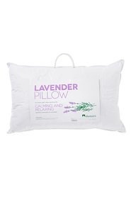 ALASTAIRS Lavender Polyester MicroFibre Cover Pillow